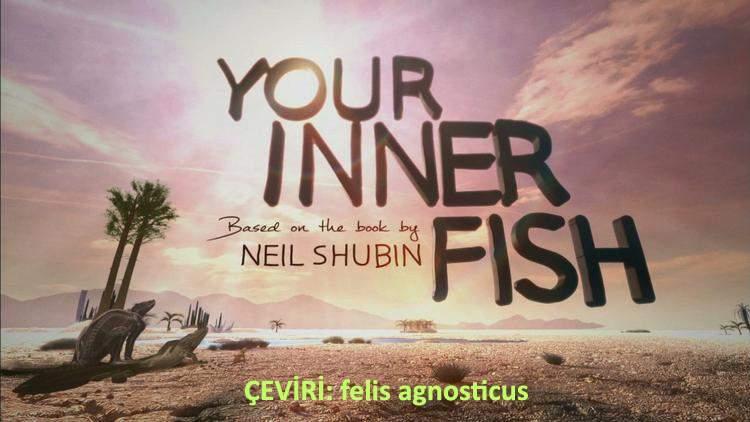 İçimizdeki Balık belgeseli (3 bölüm)